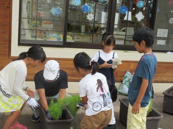 h300901 秋の花を植えよう5-1