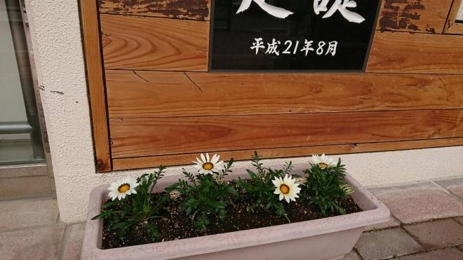 H300527 花だより5