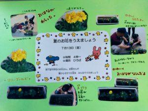 H300713 花植え1