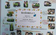 h300901 秋の花を植えよう1