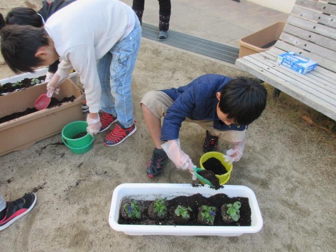 h301214 花プロ「春の花を植えよう3-2