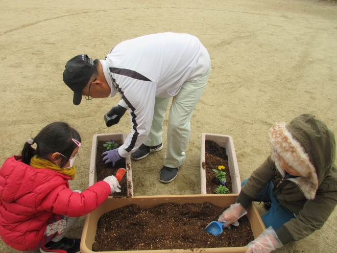 h301214 花プロ「春の花を植えよう3-3